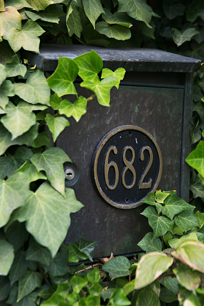 ivy wall with street numbers
