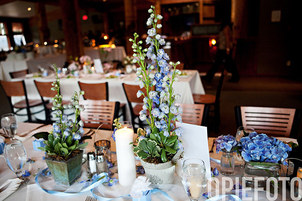 park city red pine wedding